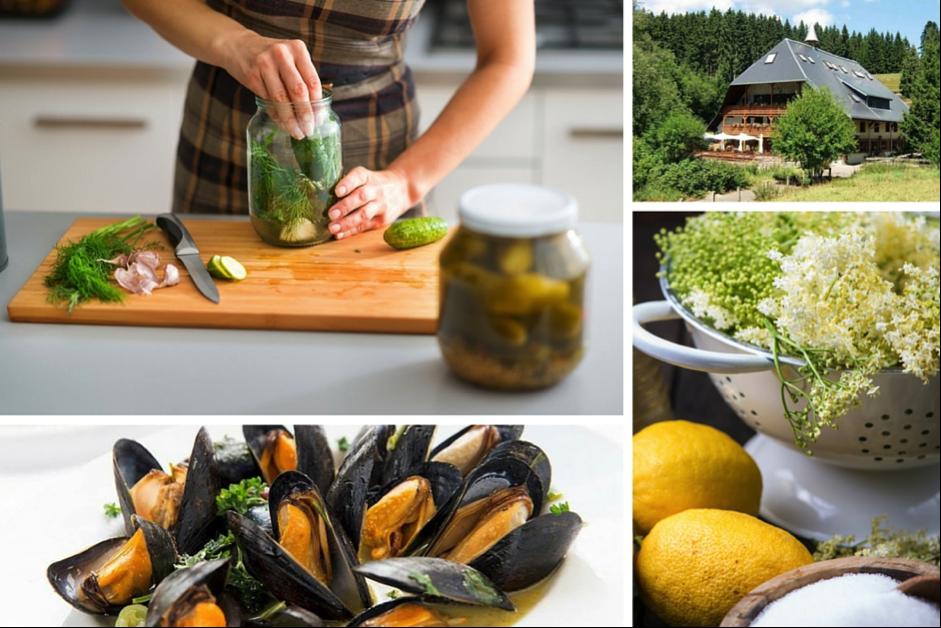 Foodie-foraging-blog-article