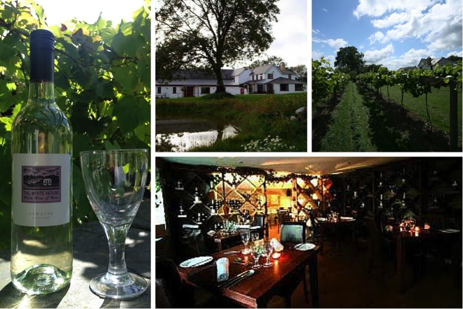 Historic-Hotels-of-Europe-Jabajak-Vineyard-Wales