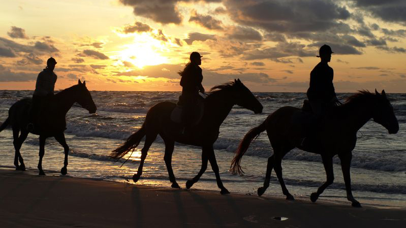 Horse-riding-sunset