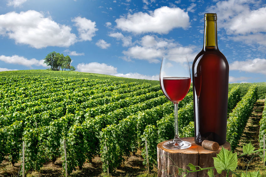 A wine lover's tour of western France
