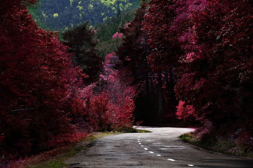 Three Romantic Road Trips in Europe