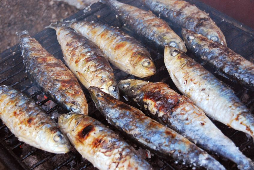 Seafood in Europe - Sardines in Lisbon
