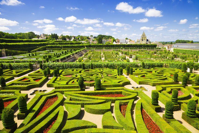 Villandry chateau garden, France