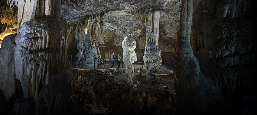 Postojnska Jama cave, Slovenia