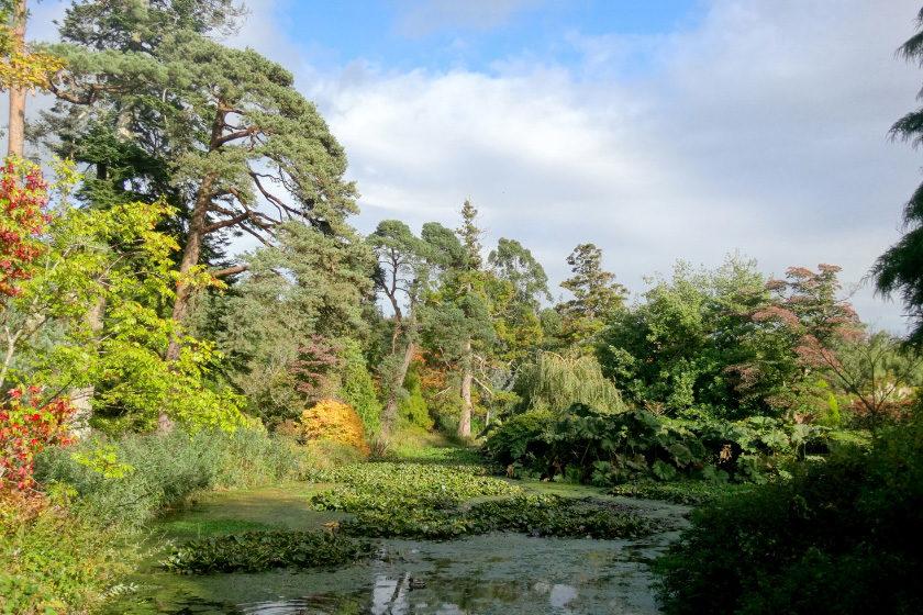 Fota Gardens